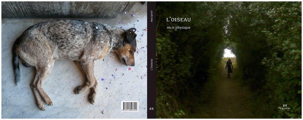 loiseau-couv-blog
