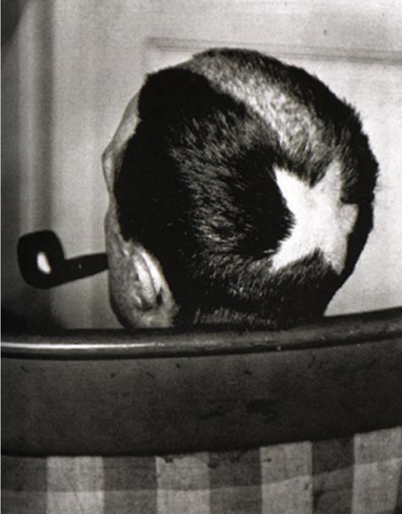 portrait-de-marcel-duchamp-man-ray-1921-copie