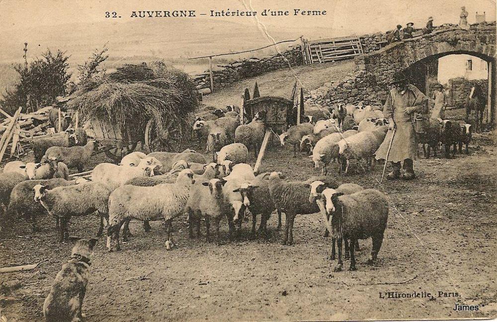 1422613011-Cantal-ferme
