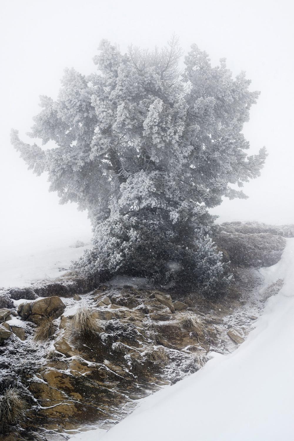 ┬® Eric Bourret - Oisans fev 2015 - 189