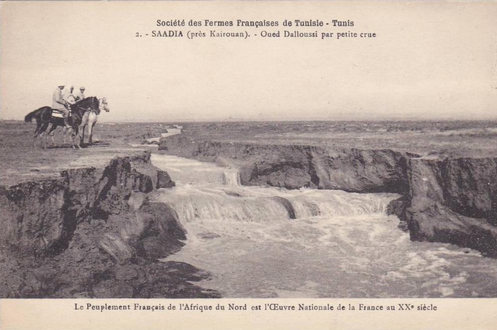 3167-carte-postale-ancienne-afrique-du-nord-saadia-en-1900-pres-kairouan-oued-colon-francais