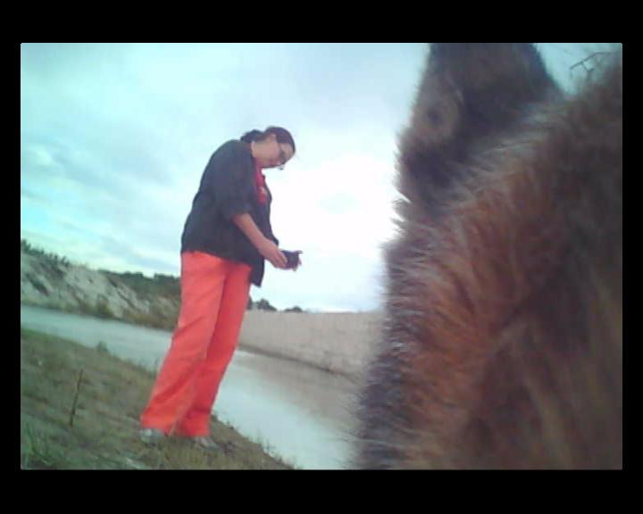 Charo's video