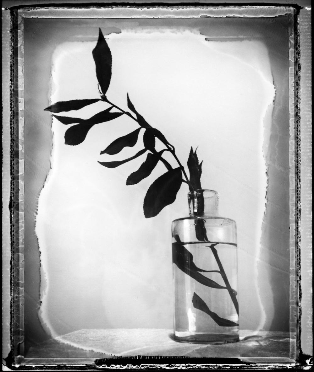 Pola 665 négatif / Mes nuits / © Gil Rigoulet