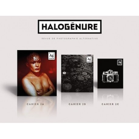 halogenure-no-02-printemps-2017