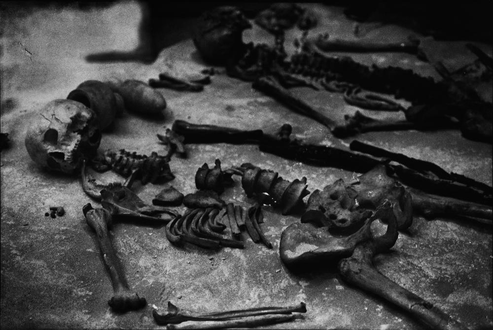 squelette649