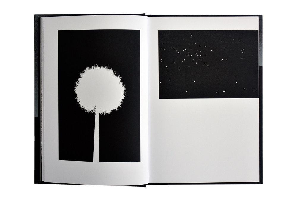 orbit_book_photo_04