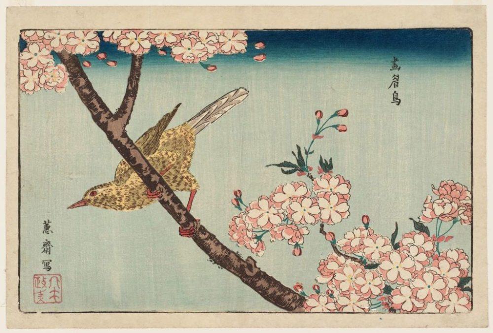 estampe-japonaise-cerisiers-en-fleurs_23-1024x693