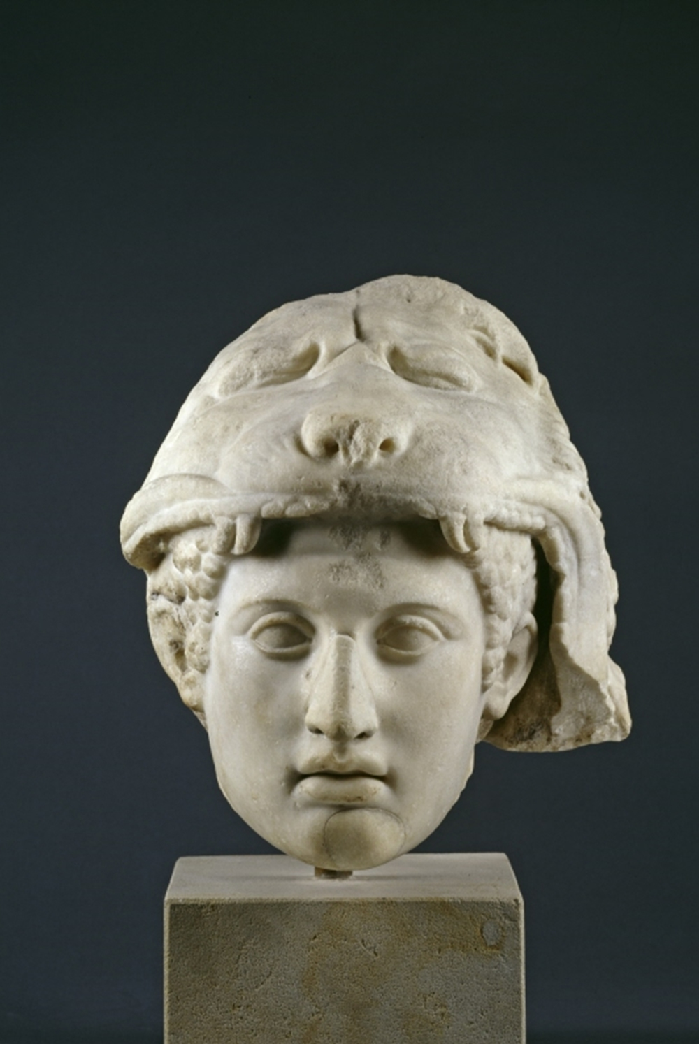 Grèce et Rome - SK 188 - Tête d'Hercule (SMB) - DIFFUSABLE A PARTIR DU 6 MARS-HD