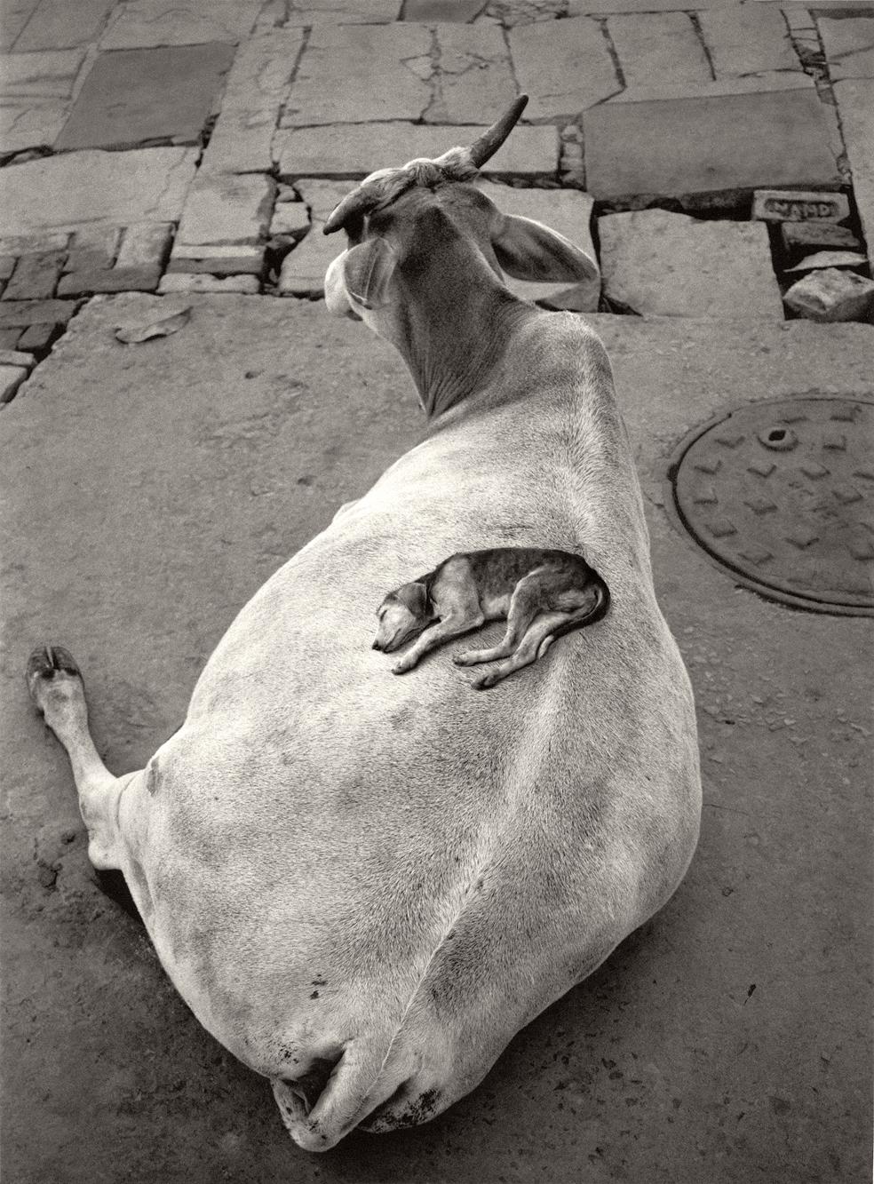 Varanasi-India-1999-Celine
