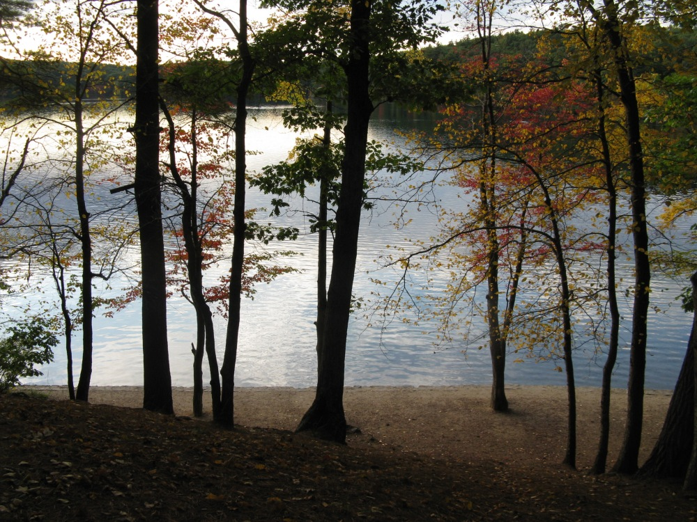 Walden_Pond_in_October,_Concord_MA