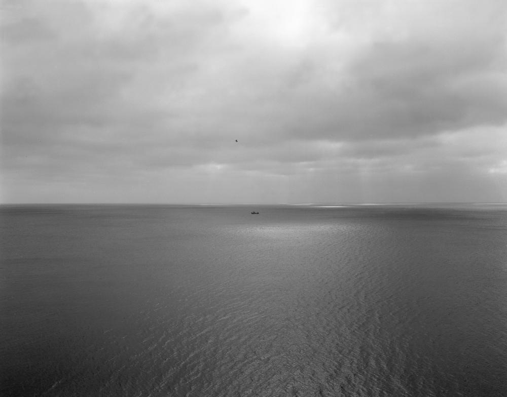 P2490 océan bateau oiseau !