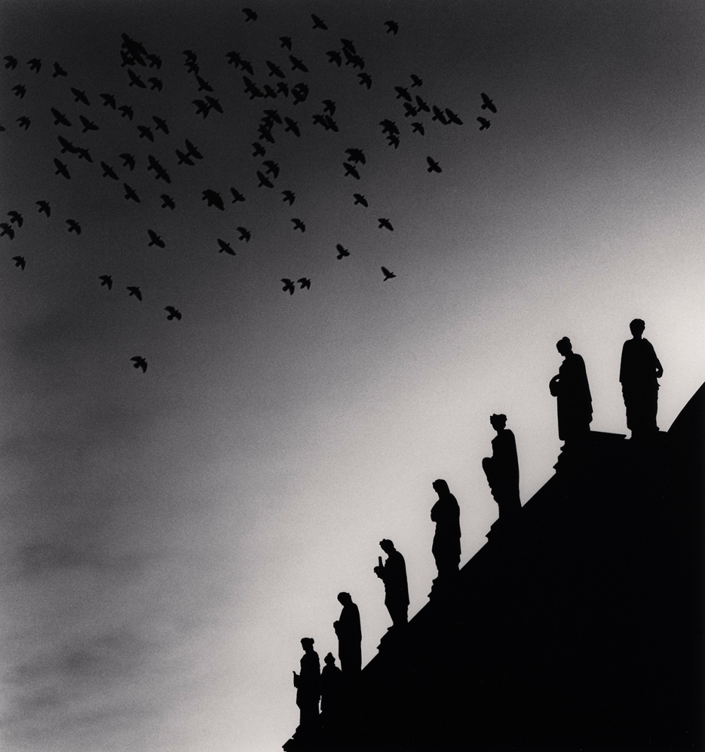 One Hundred and Five Birds, Prague, Czechoslovakia. 1992