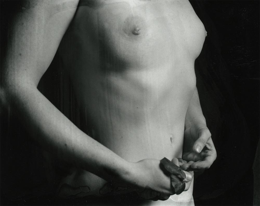 vague-reve-maria-baoli-judith-hands-h800_1010