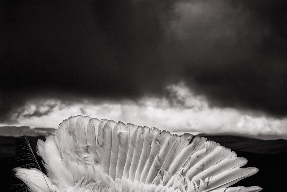 GiorgioNegroAllAboutPhoto19-4