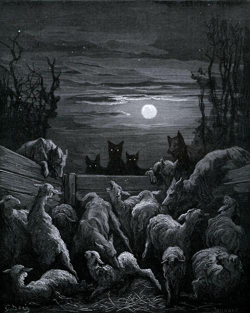 Loups et brebis