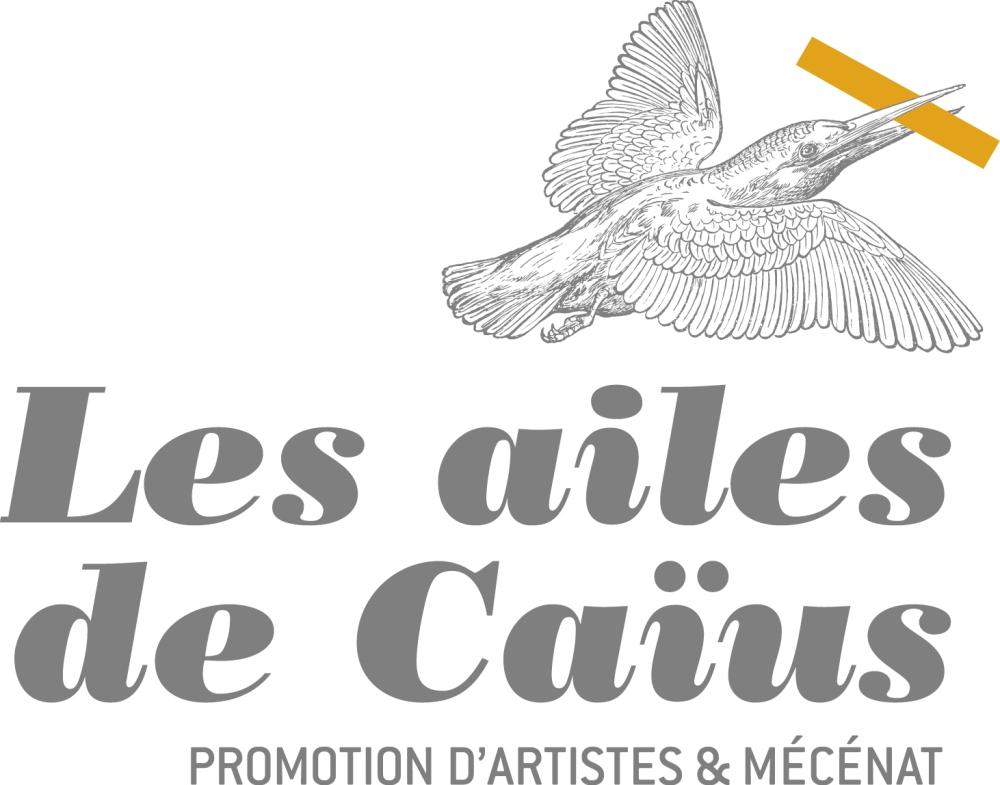 Logo_CAIUS_OK