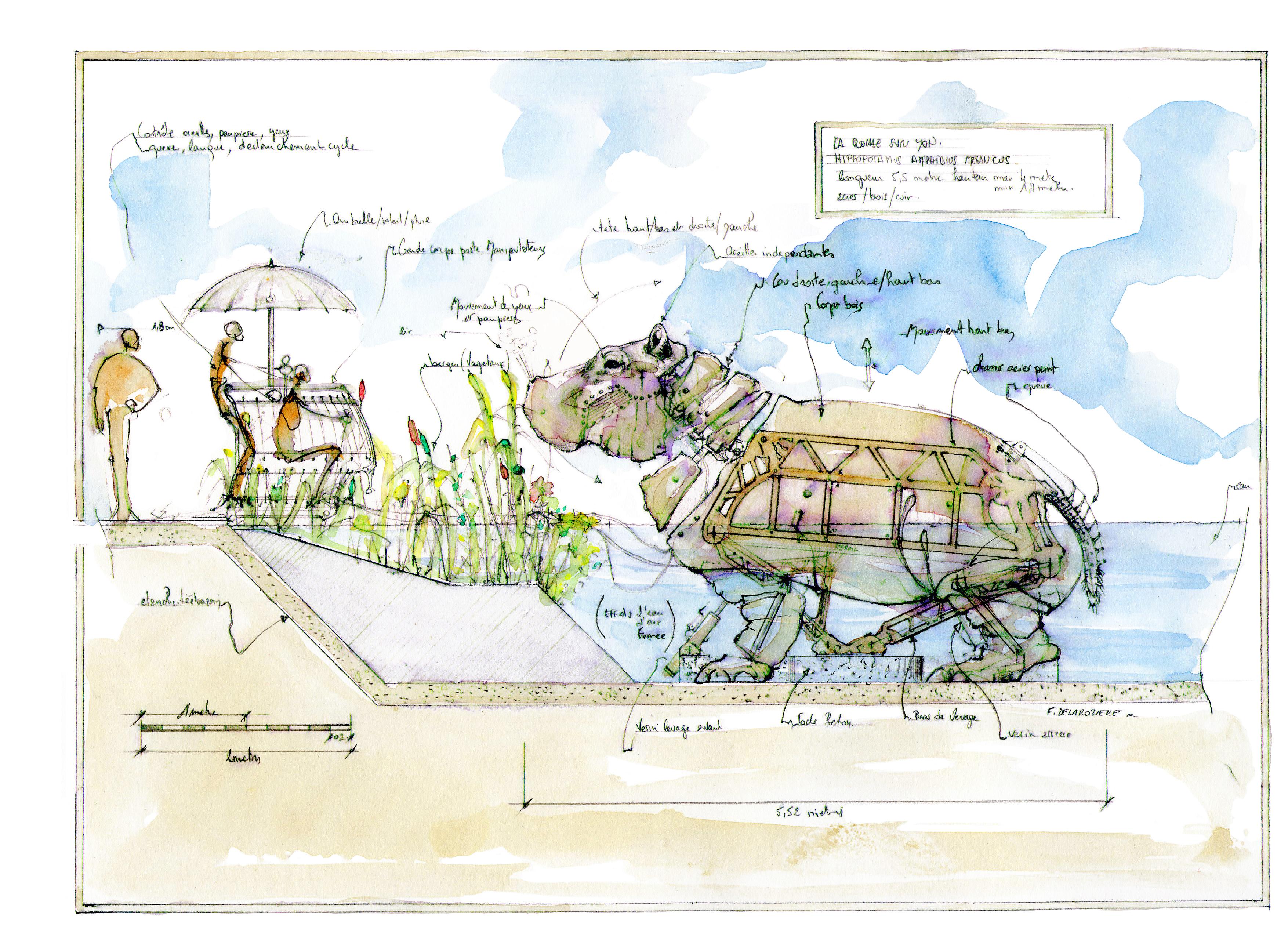 Croquis de l'Hippopotame (c) Delaroziere