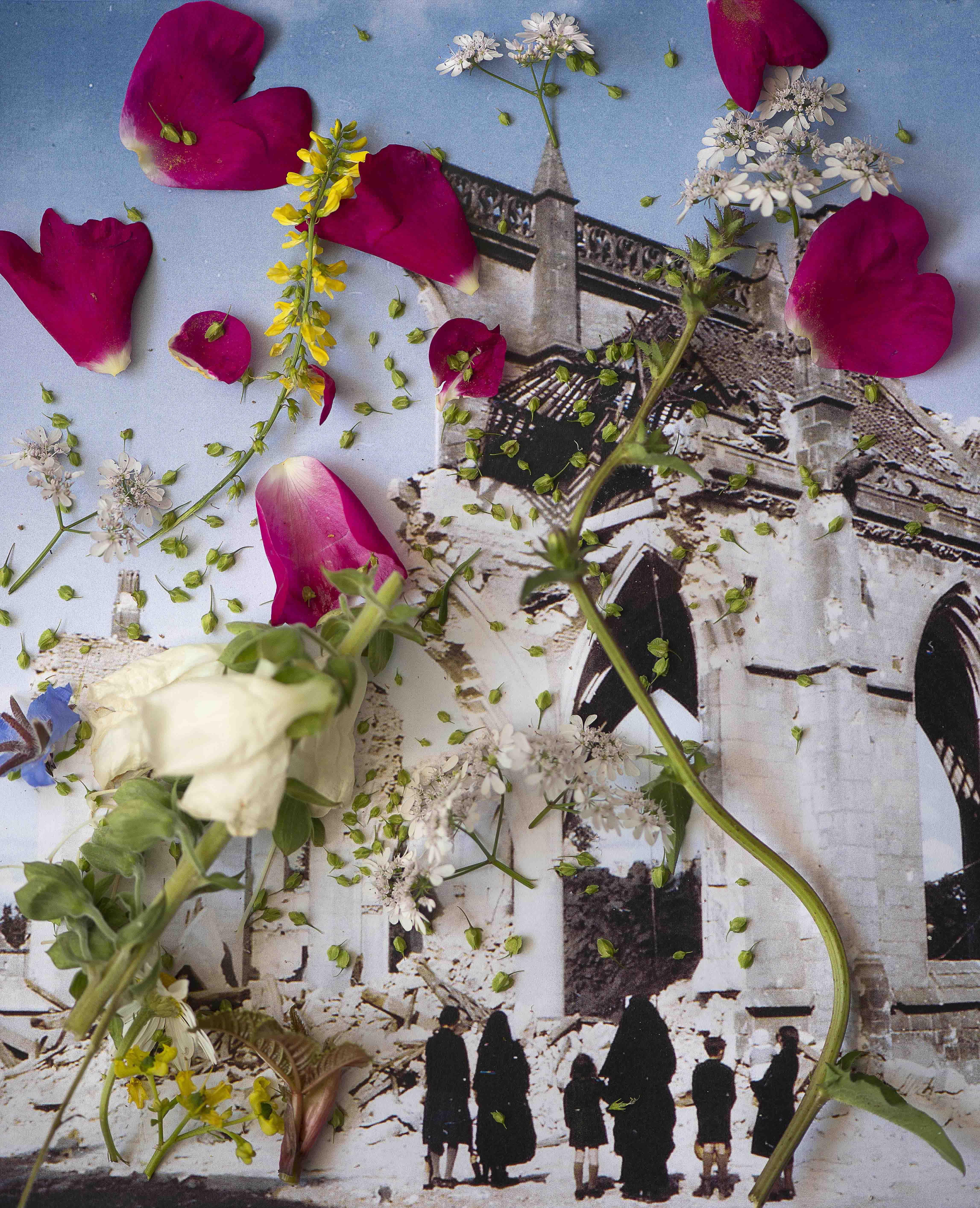 6 - Laurence Aëgerter - Digitalis ambigua - Healing Plants for Hurt Landscapes - BD