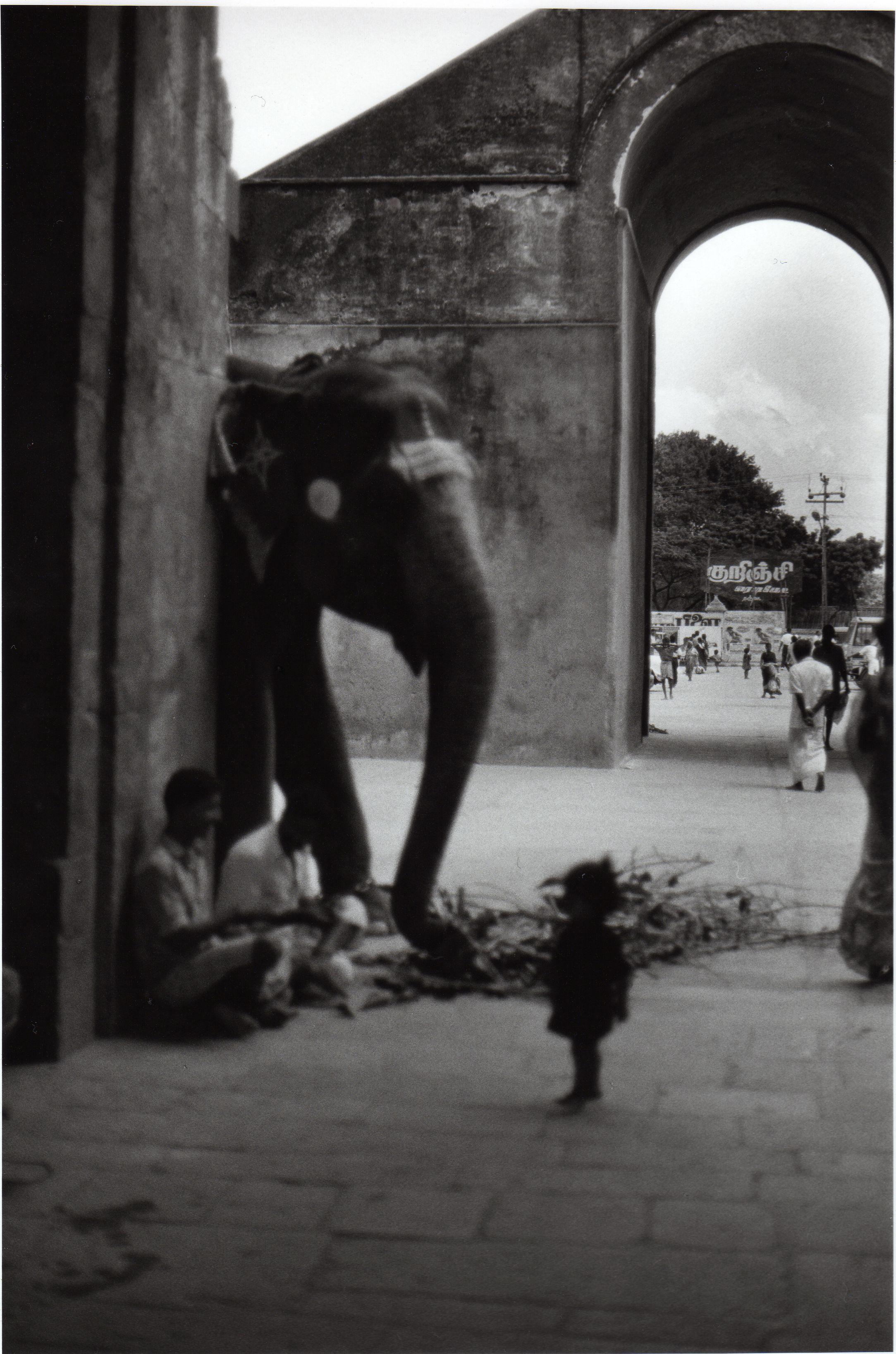 Inde 1994