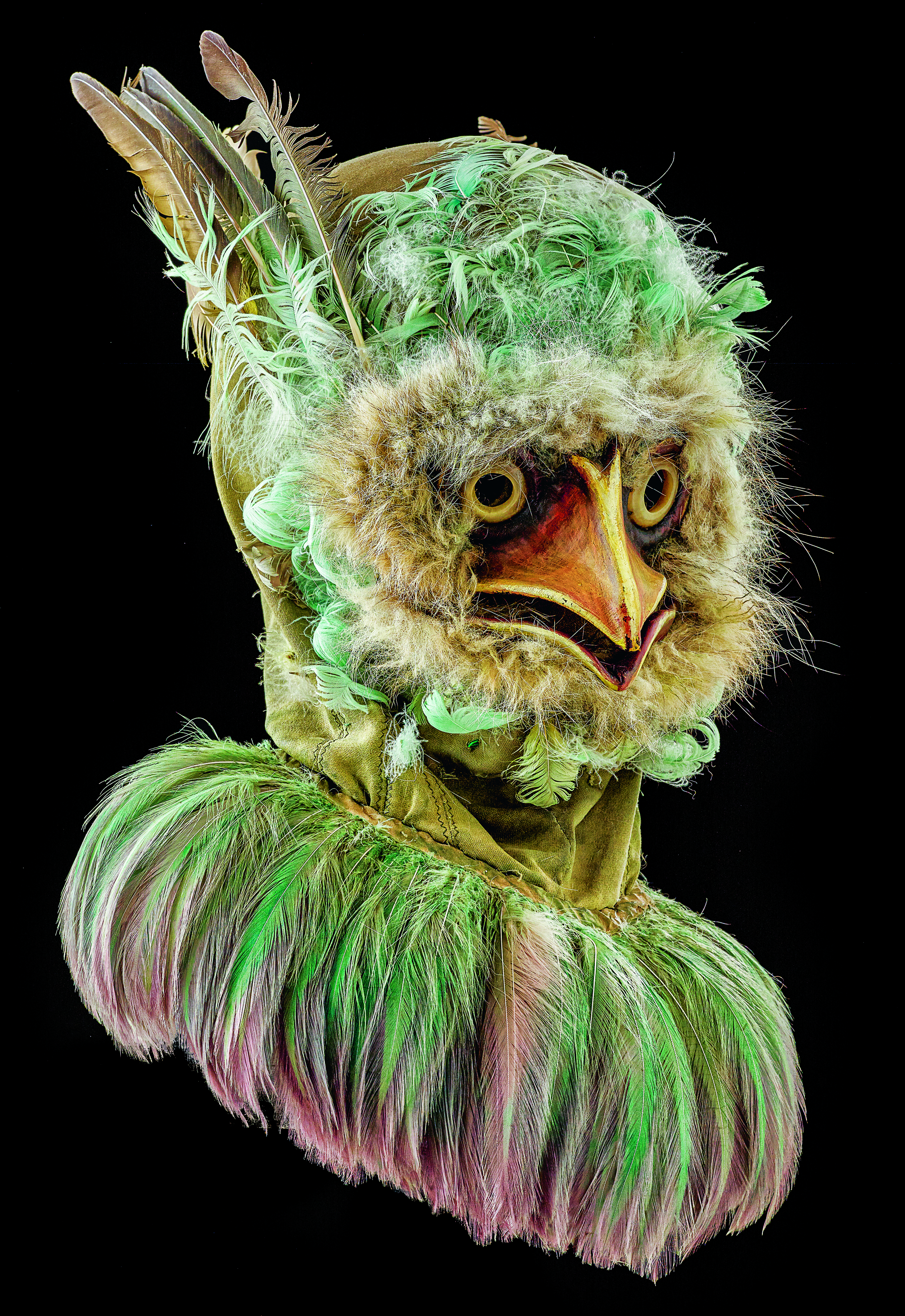 L'Oiseau vert