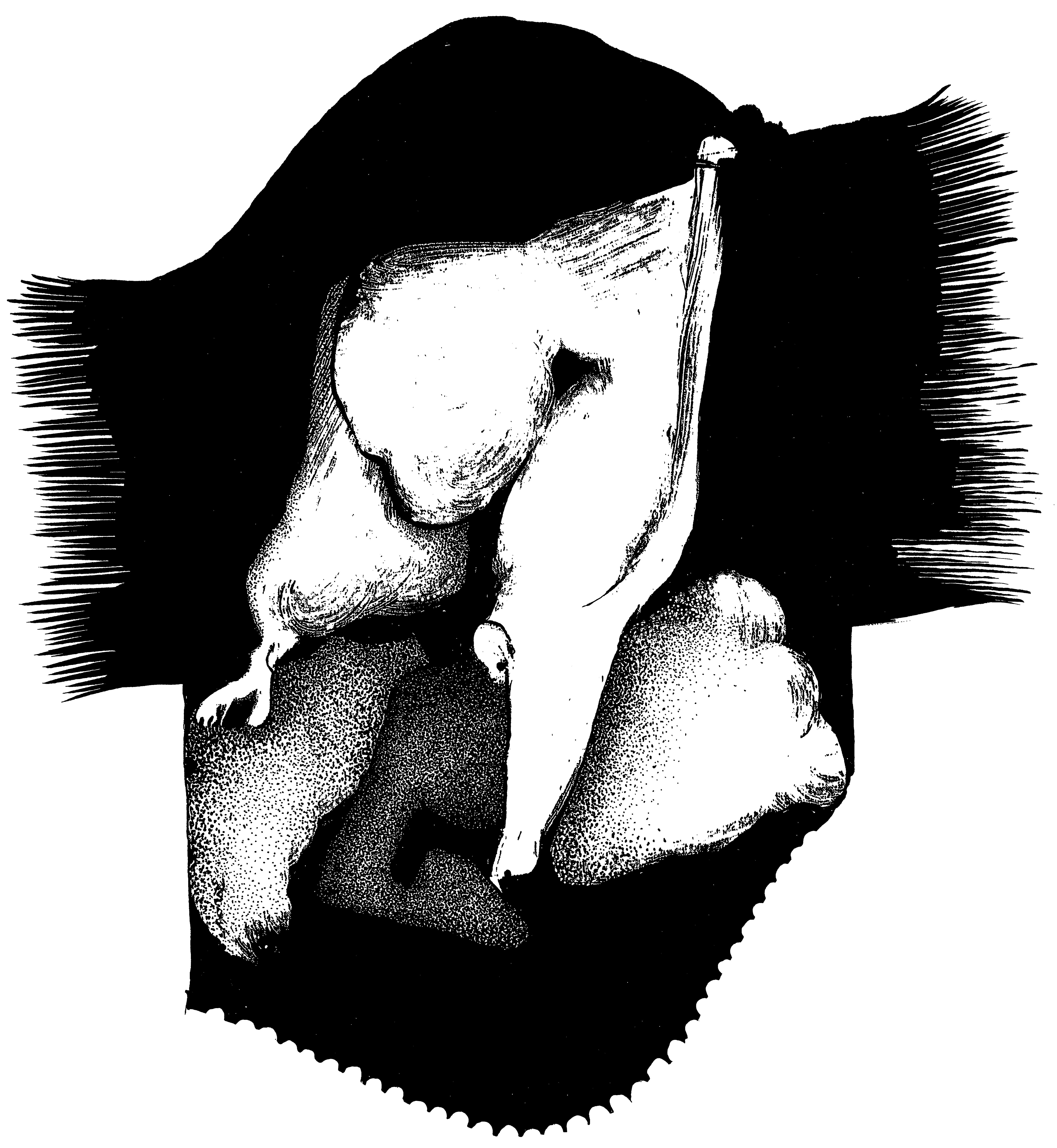 sénéca012