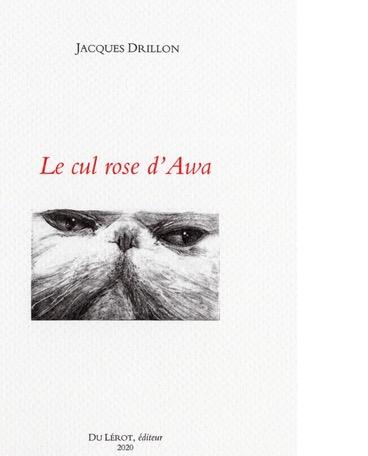 le-cul-rose-d-awa-l-oeil-goguenard-de-drillon_5518954