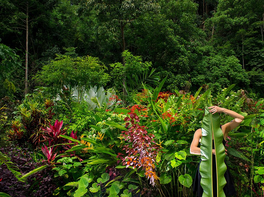 Le jardin, Olivia Lavergne, 2017