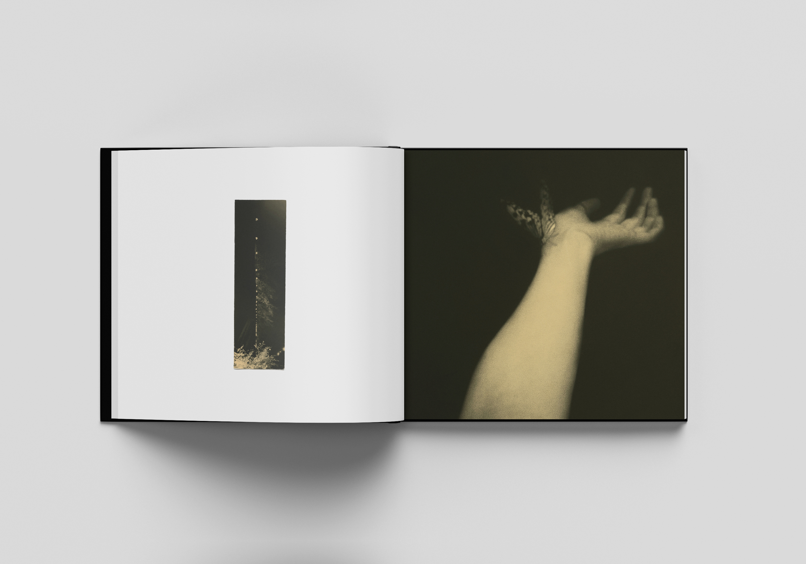iikki-014-BOOK-PROMO-Inside7