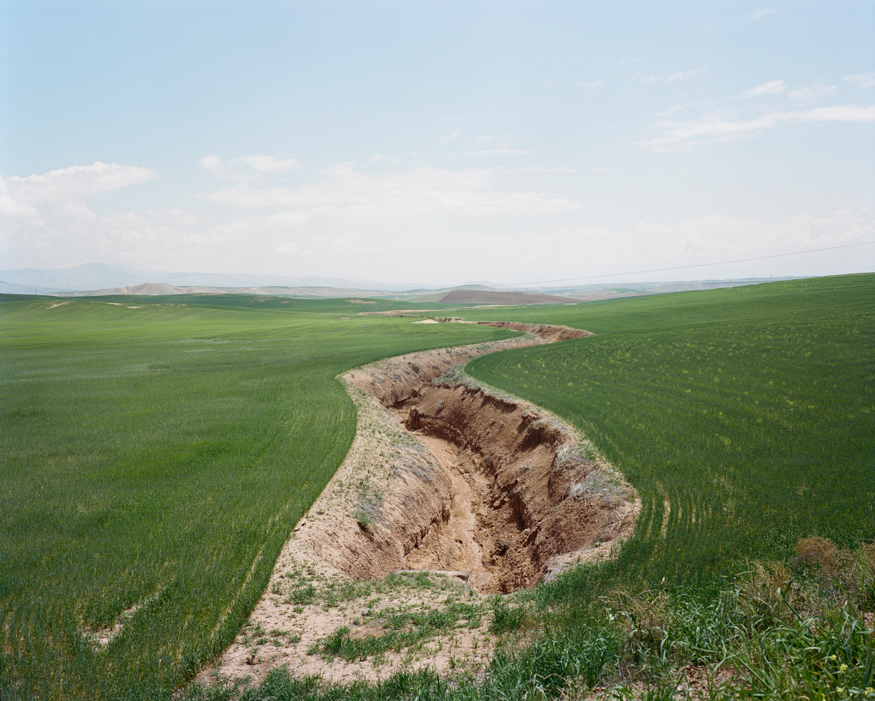 View of rice fields in the southern part of Turkey
