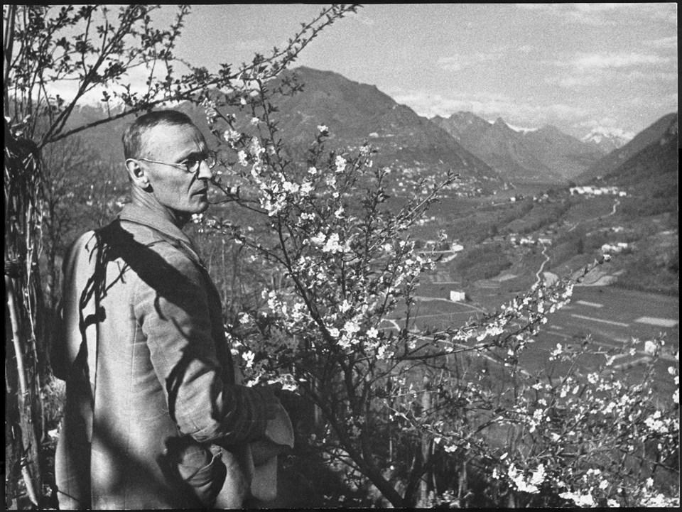 sentiero-sulle-orme-di-hermann-hesse-3