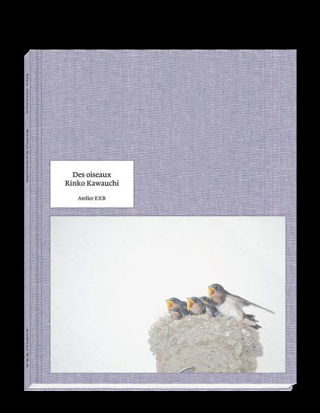 des-oiseaux-rinko-kawauchi