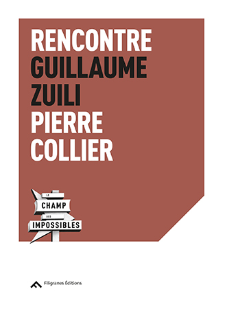 guillaume-zuili_filigranes-1