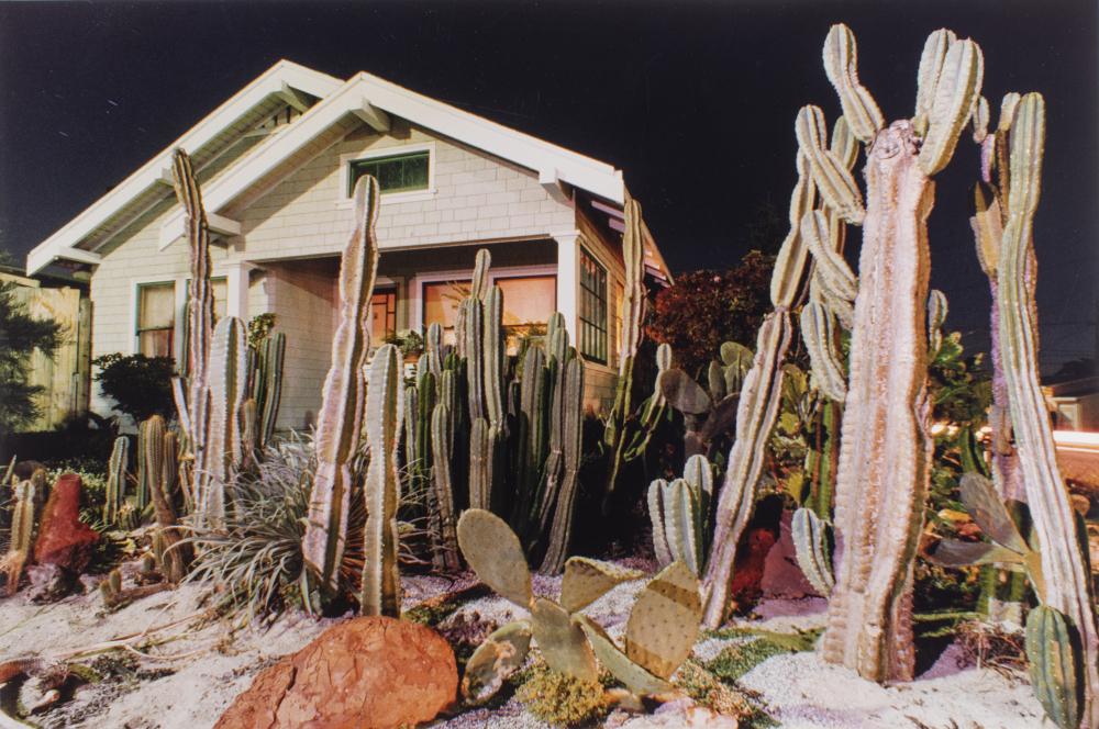 Ollman Arthur - Maison avec cactus