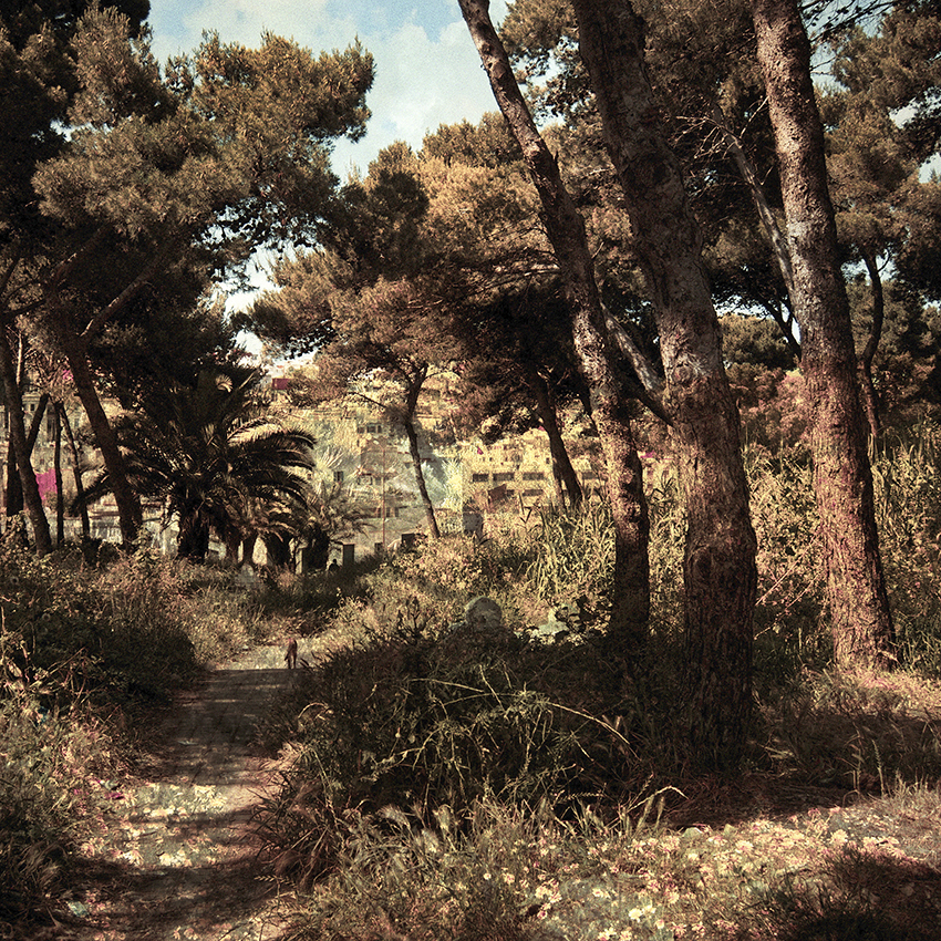 Tarifa - Tanger